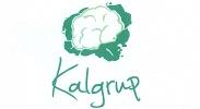 Logotyp Kalgrup